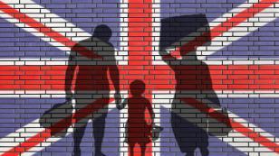 İngiltere'de göçmen karşıtı partinin başına yeni lider