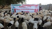 Rahma Austria ile Kurban kampanyasını konuştuk!