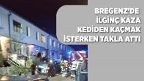 Bregenz'de ilginç kaza!