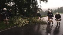 Höchst'te devrilen ağaçlar nedeniyle L19 yolu kapandı!